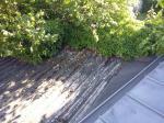 Flachdach vor der Sanierung